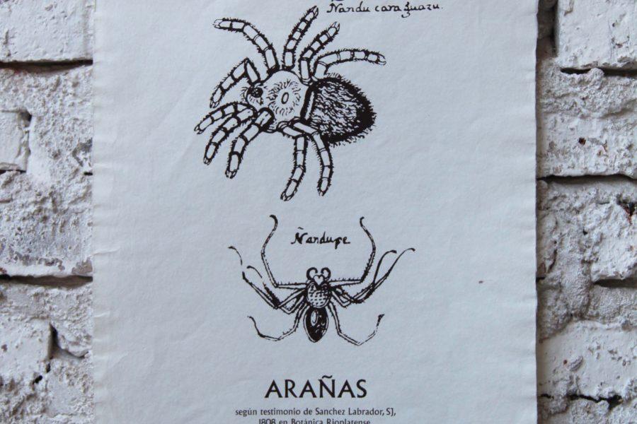 """""""Arañas"""" / A3 / Sobrerelieve"""